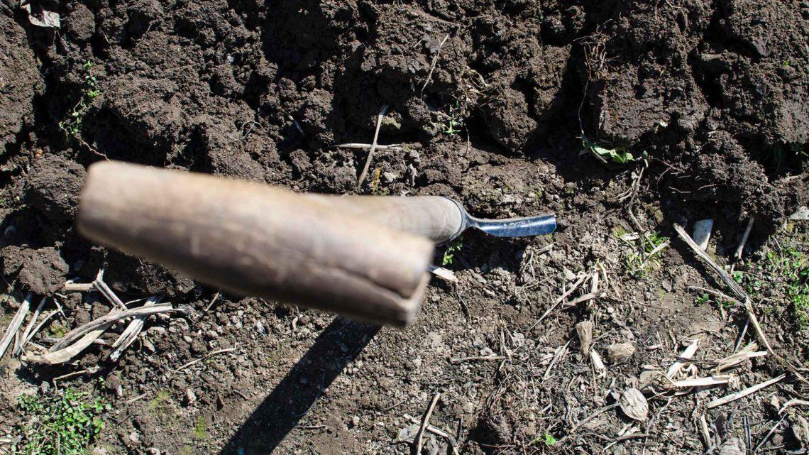 Risques environnement-santé liés aux pollutions dans les jardins
