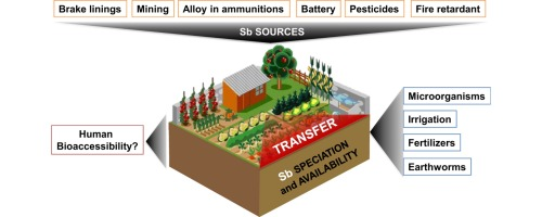 Antimony bioavailability : knowledge and research perspectives for sustainable agricultures