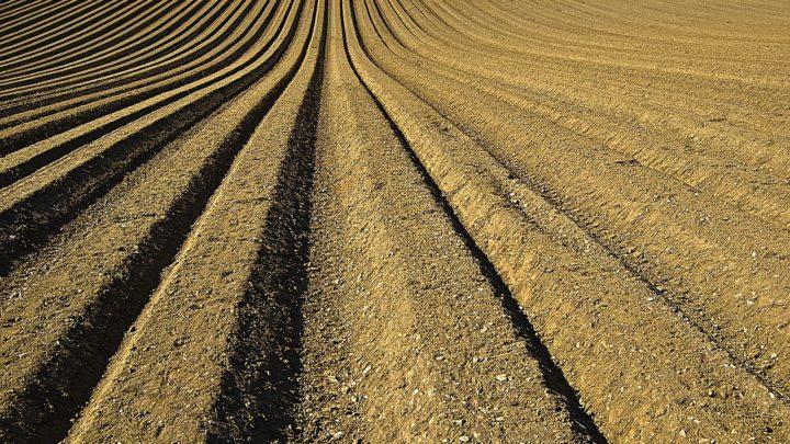 Filmer l'artificialisation d'une terre agricole périurbaine