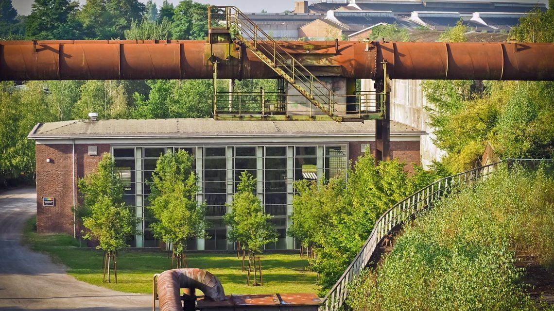 Foliar heavy metal uptake, toxicity and detoxification in plants