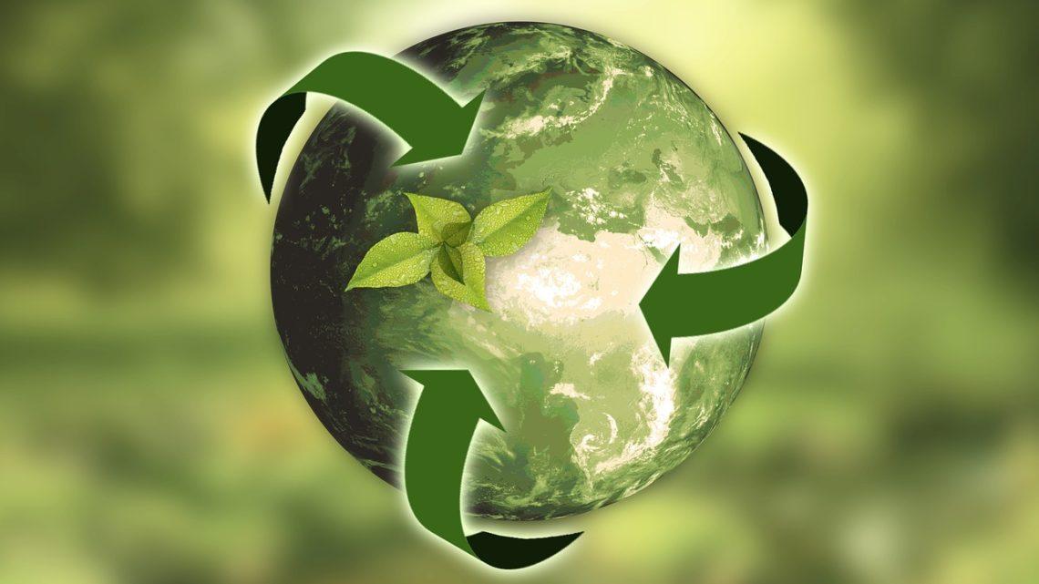 Agriculture urbaine durable : opportunité pour la transition écologique