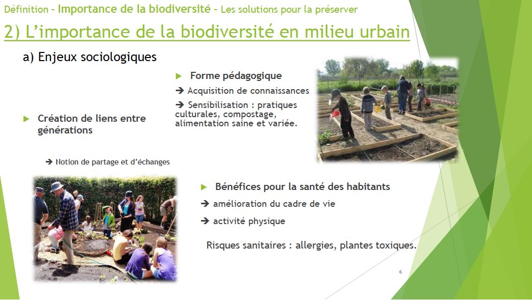 biodiversite-urbaine