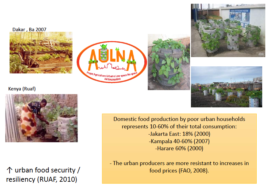 urban-agricultures