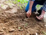 ressources-agronomie-4