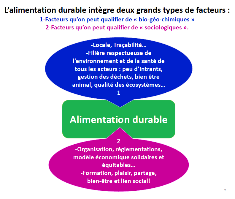 transition-ecologique-alimentation-durable