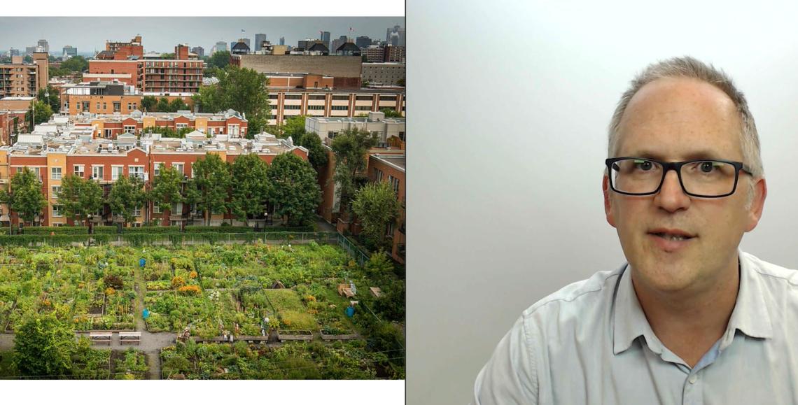 Le rôle des jardins individuels à Montréal (ressource vidéo)