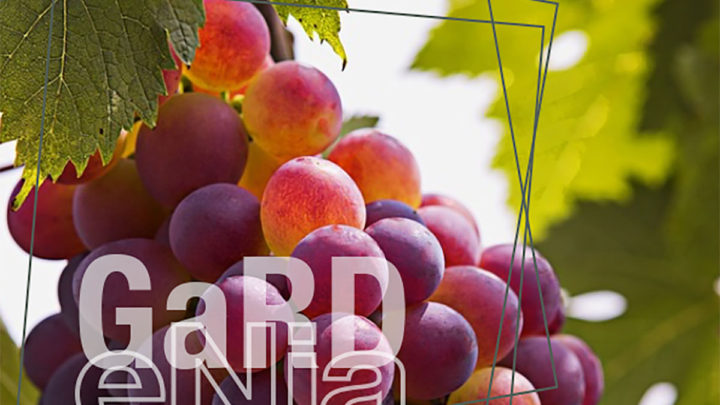 Gardenia : une recherche-action participative autour de la préservation d'espaces agro-naturels