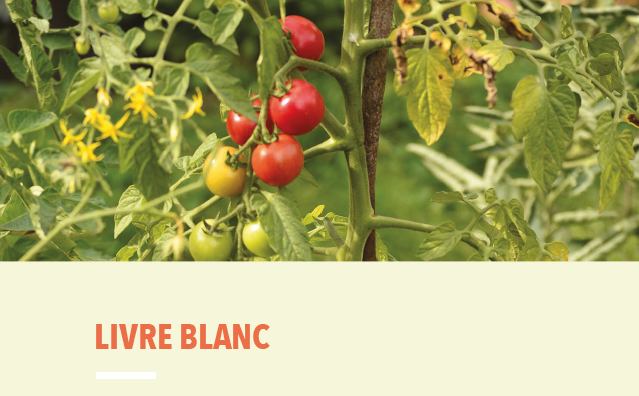 Livre blanc «Réflexions pour la recherche et la formation en agriculture urbaine»