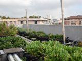 colloque-agriculture-urbaine-grenoble