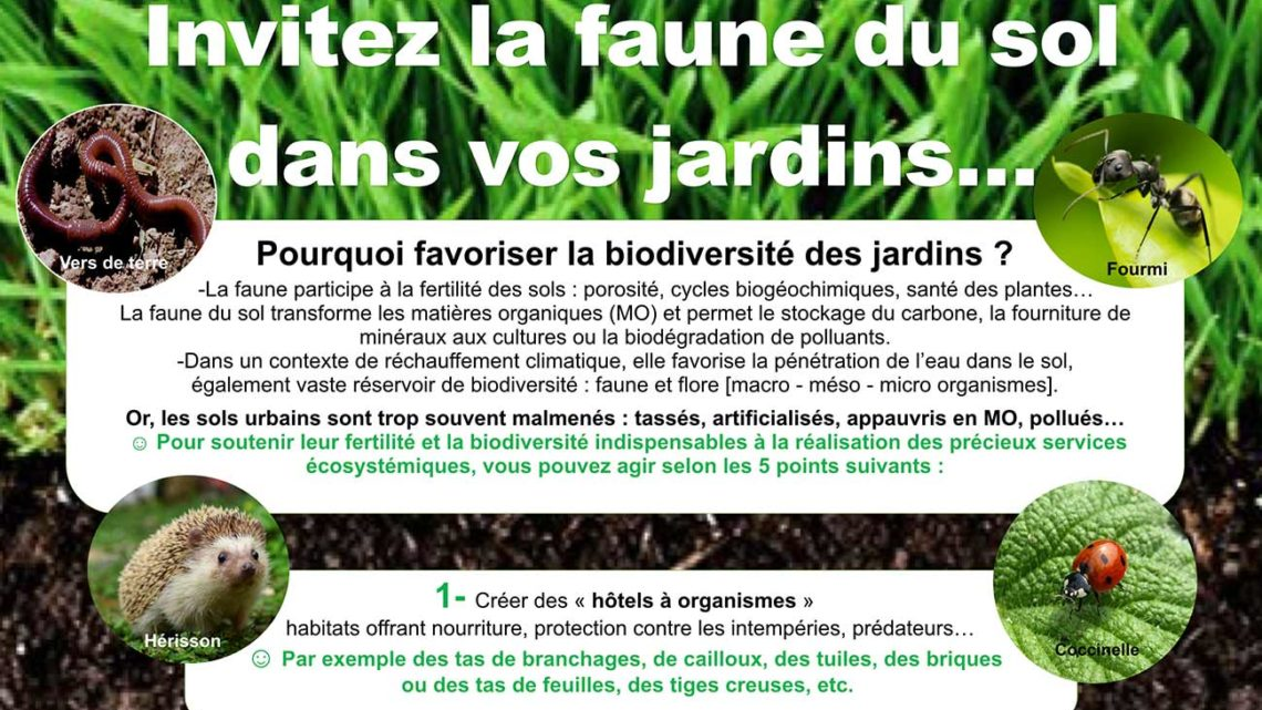 Poster : invitez la faune du sol dans vos jardins…