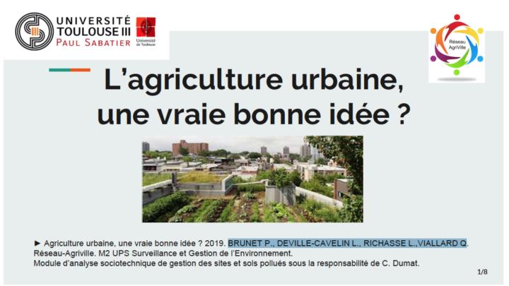 L'agriculture urbaine : une vraie bonne idée ?